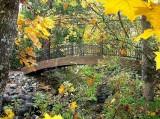 fall-09-022
