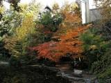 fall-09-029