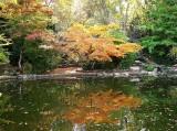 fall-09-031